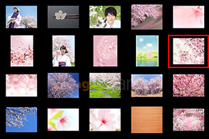 類似検索(スパーク)に使う画像を選びます。