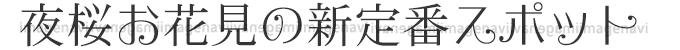 夜桜お花見の新定番スポット