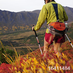 ハイキング